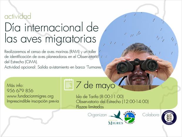 Dia Aves Migratorias